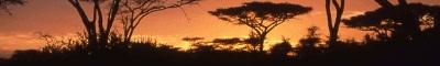 Tanzania.ReisFotos.com