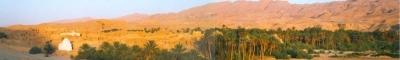 Tunesië.ReisFotos.com